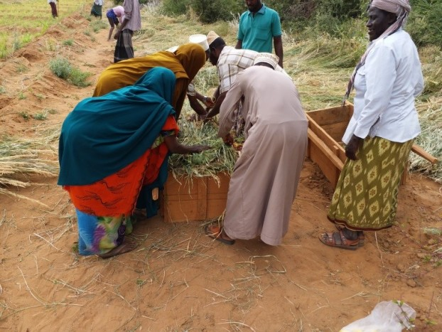 IGAD-FAO Partnership Program (PP)