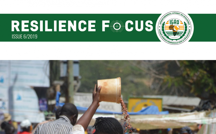 Call for articles for the next edition of the Resilience Focus Magazine