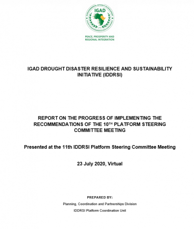 Report on the Progress of Implementing the Recommendations of the 10th Platform Steering Committee Meeting