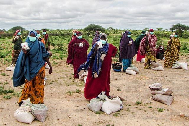 Urgent action required to prevent a major food crisis in Eastern Africa: IGAD-FAO-WFP joint statement 27 July 2020