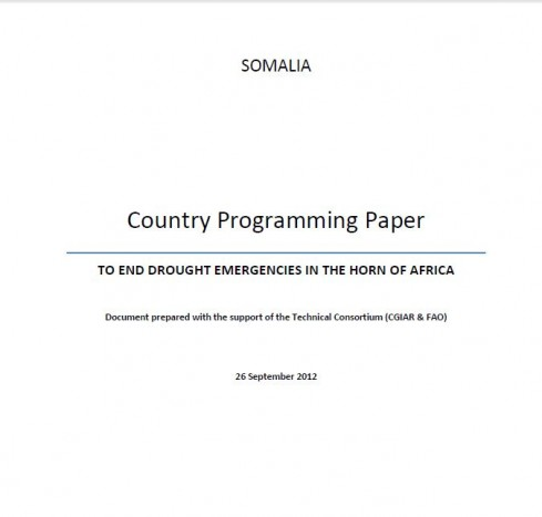 South Sudan Country Programming Paper- To End Drought Emergencies in the Horn of Africa