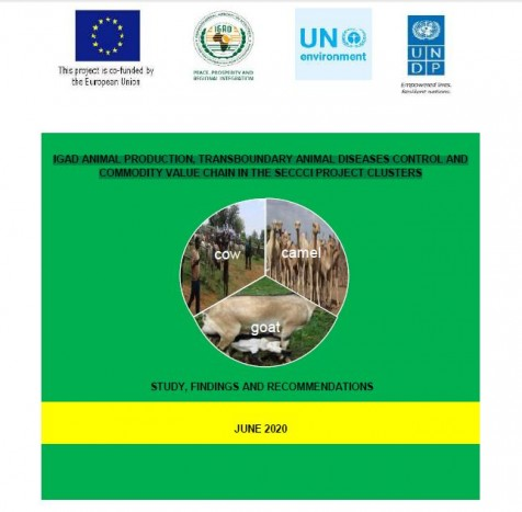 IGAD ANIMAL PRODUCTION, TRANSBOUNDARY ANIMAL DISEASES CONTROL AND COMMODITY VALUE CHAIN IN THE SECCCI PROJECT CLUSTERS